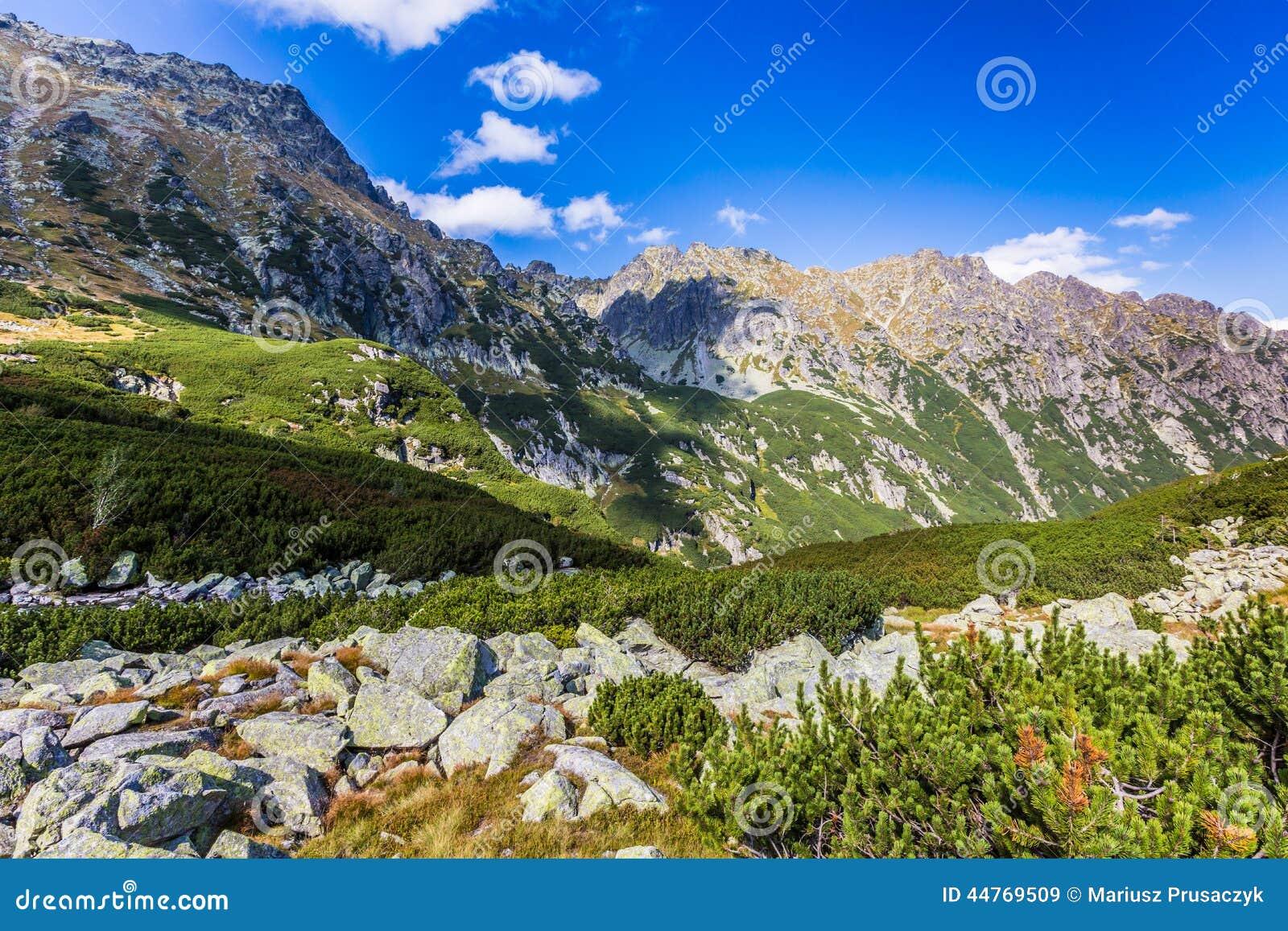 Ansicht von Tatra-Bergen vom Wanderweg polen europa