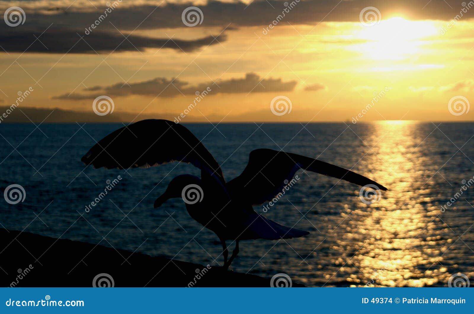Ansteigen am Sonnenuntergang