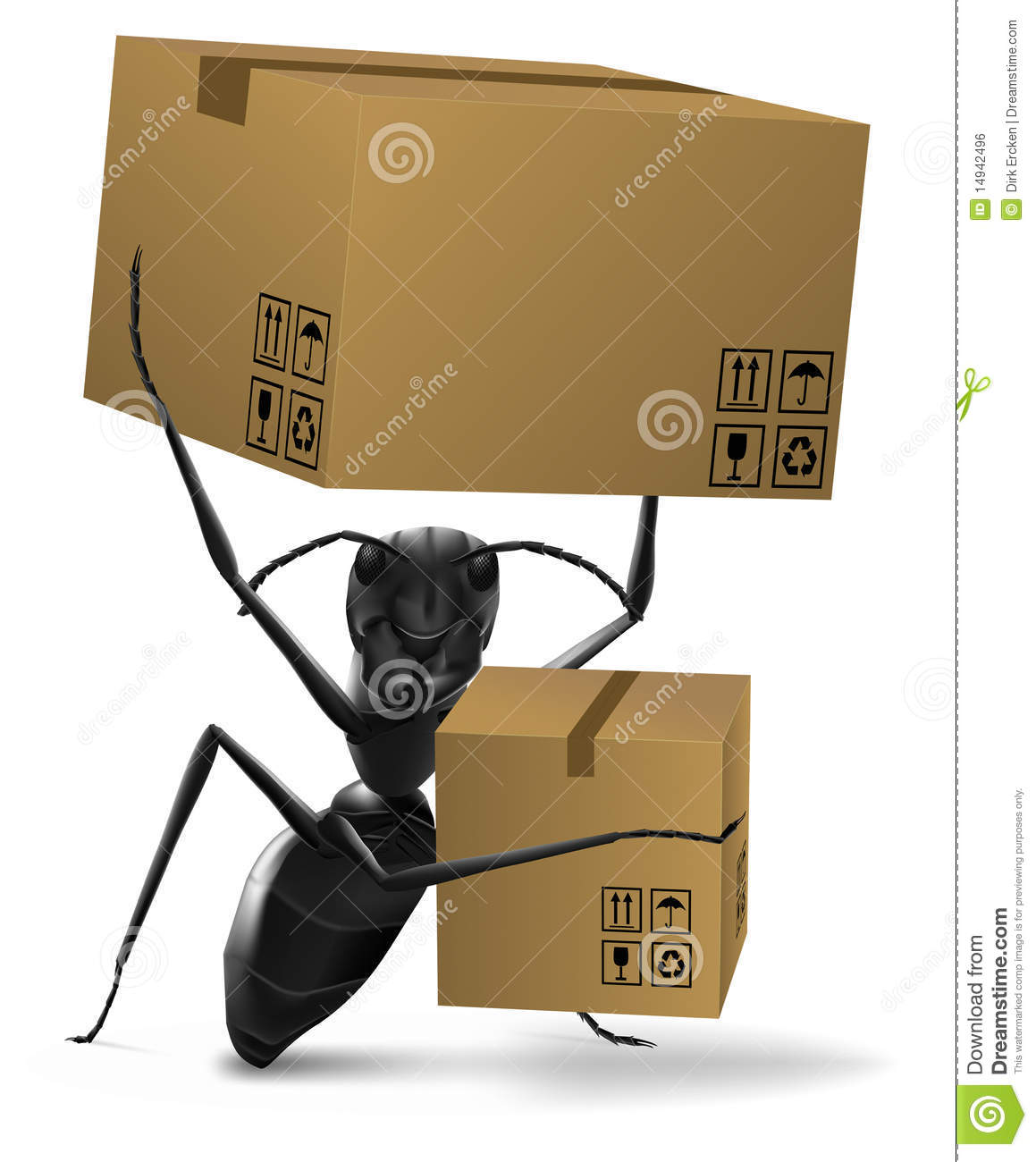 Ant cardboard box deliver or shipping
