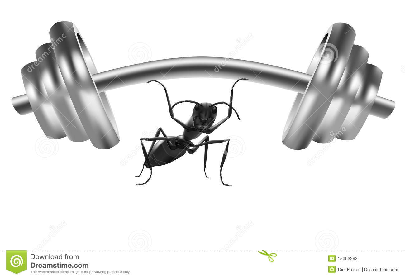 Ant Power Strong Insect Lift Heavy Weight Stock Photos
