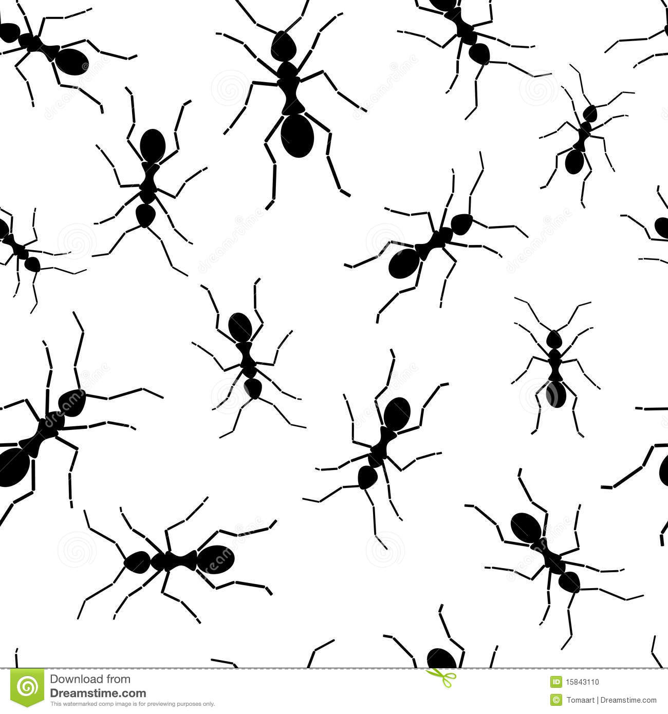 Charles Holbert furthermore Stock Photo Ant Repetitions Image15843110 likewise Animals Ant moreover  on ant mimic spider