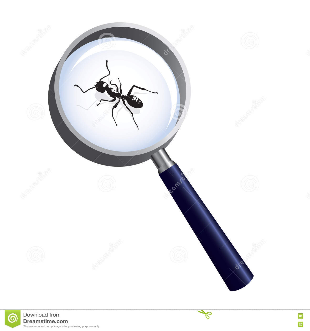 Ant Magnifying Glass