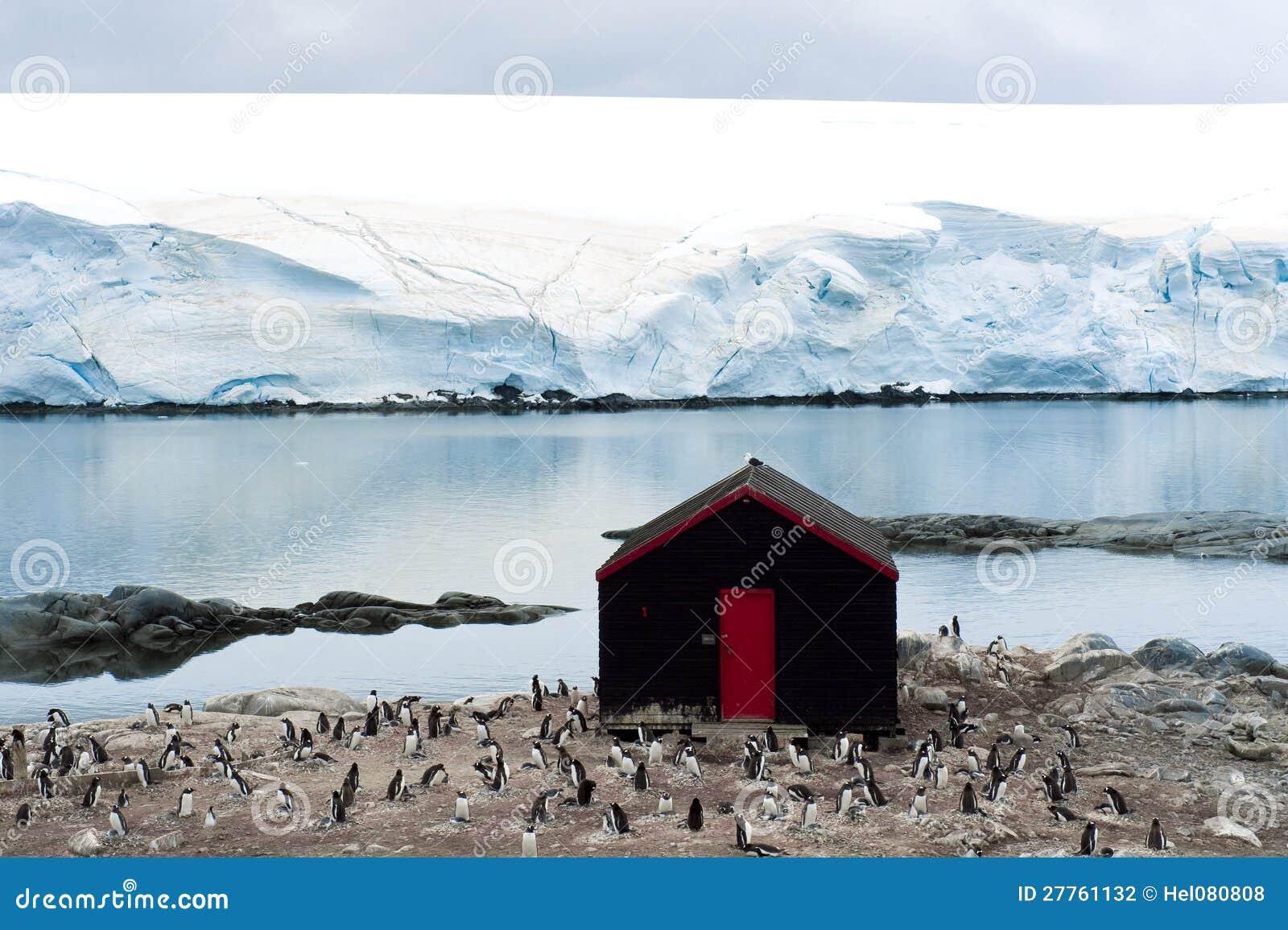 Ant3artida con los pingüinos y los glaciares