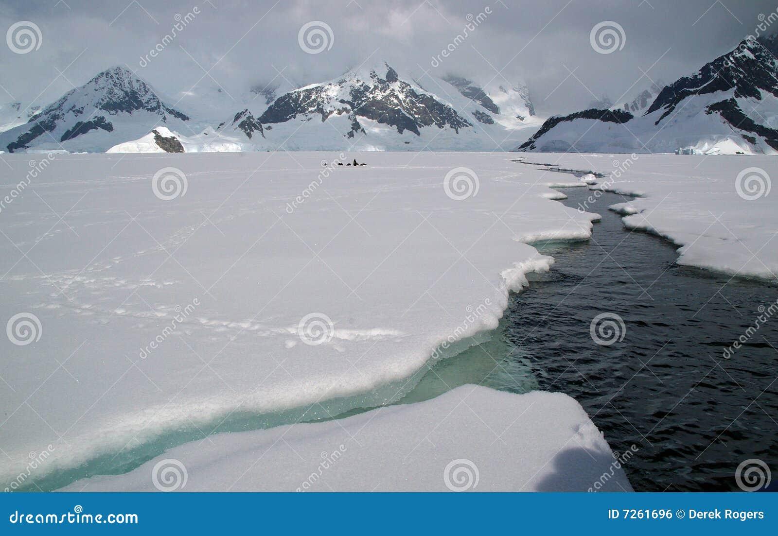 Antarctisch overzees ijs