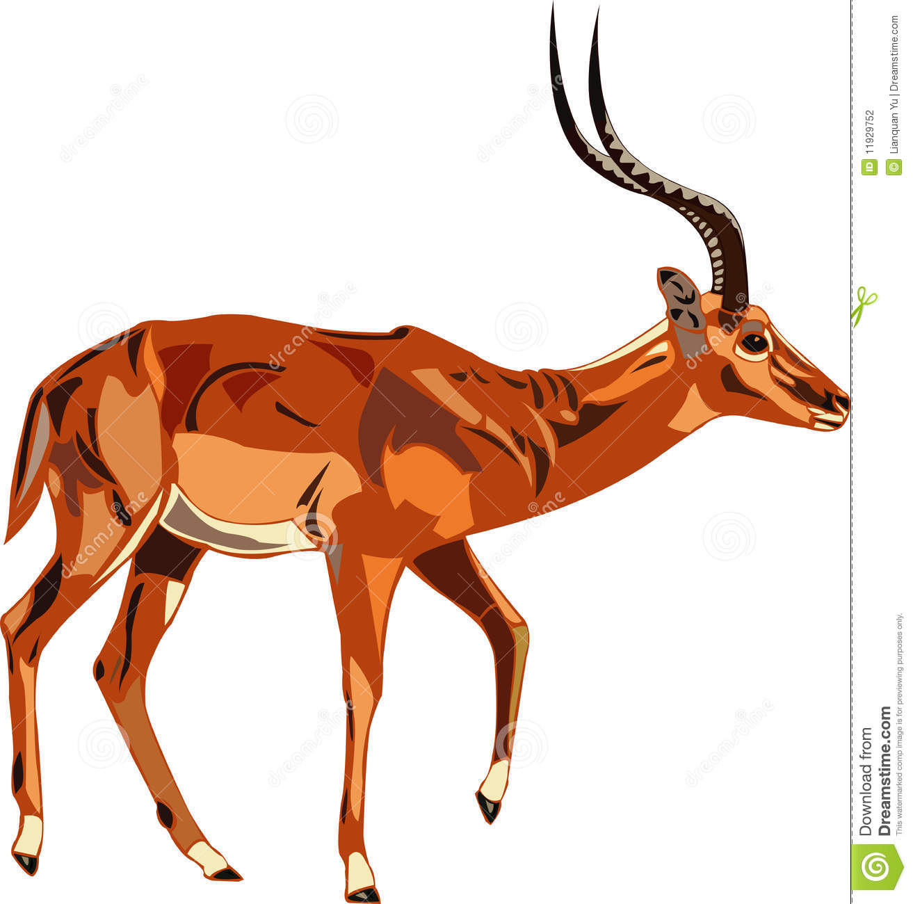 Antelope Series Impala. Stock Vector. Illustration Of