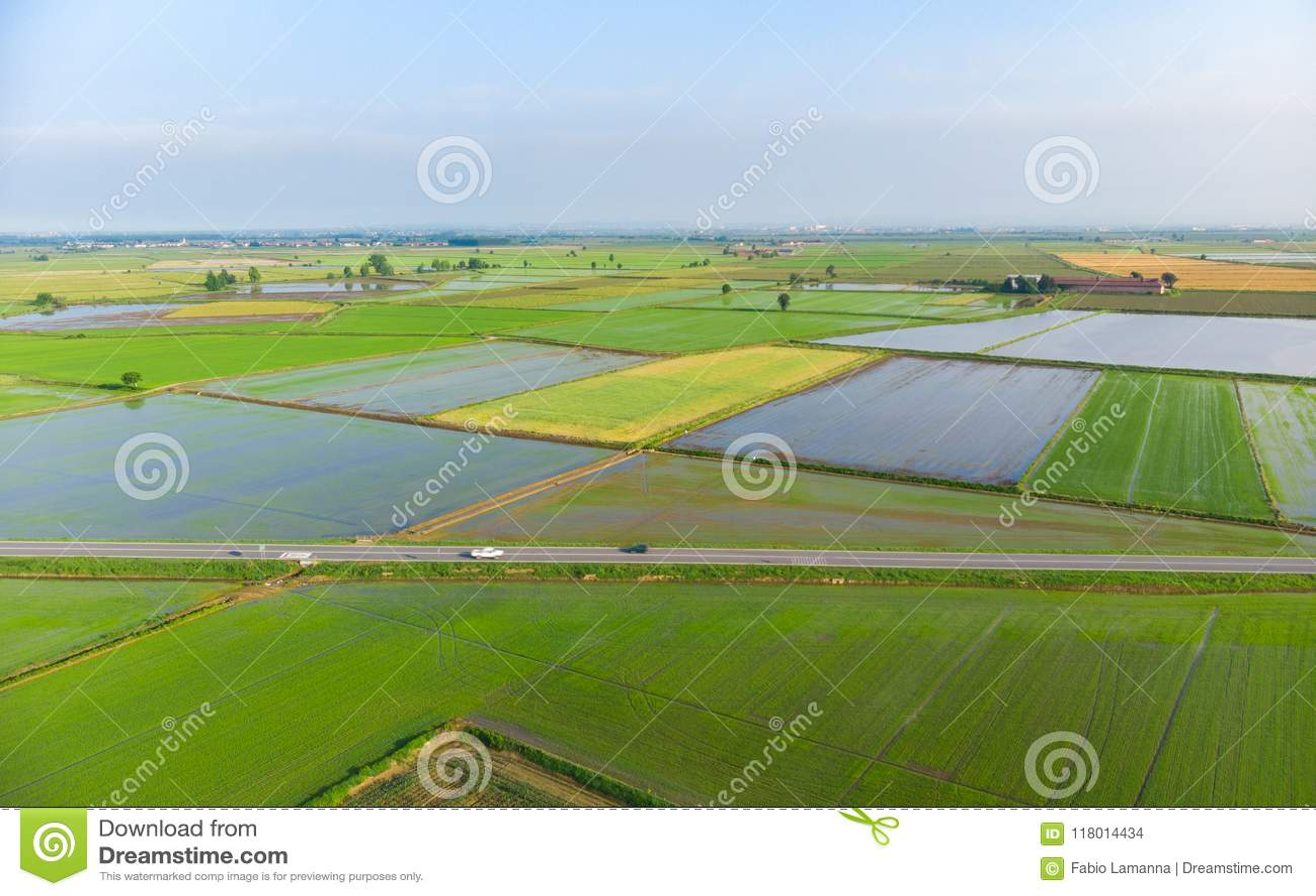 Antena: almofadas de arroz, campo italiano rural cultivado inundado da terra dos campos, ocupação da agricultura, sprintime em Pi