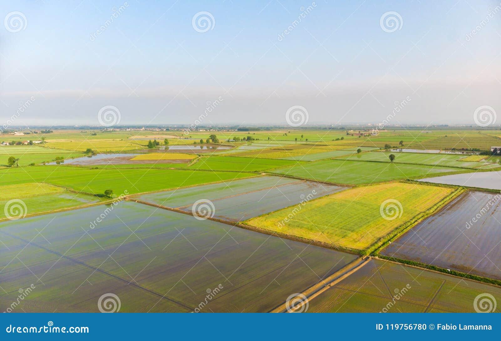 Antenn: risfält översvämmad lantlig italiensk bygd för kultiverad fältjordbruksmark, åkerbruk ockupation, sprintime i Piedmont,