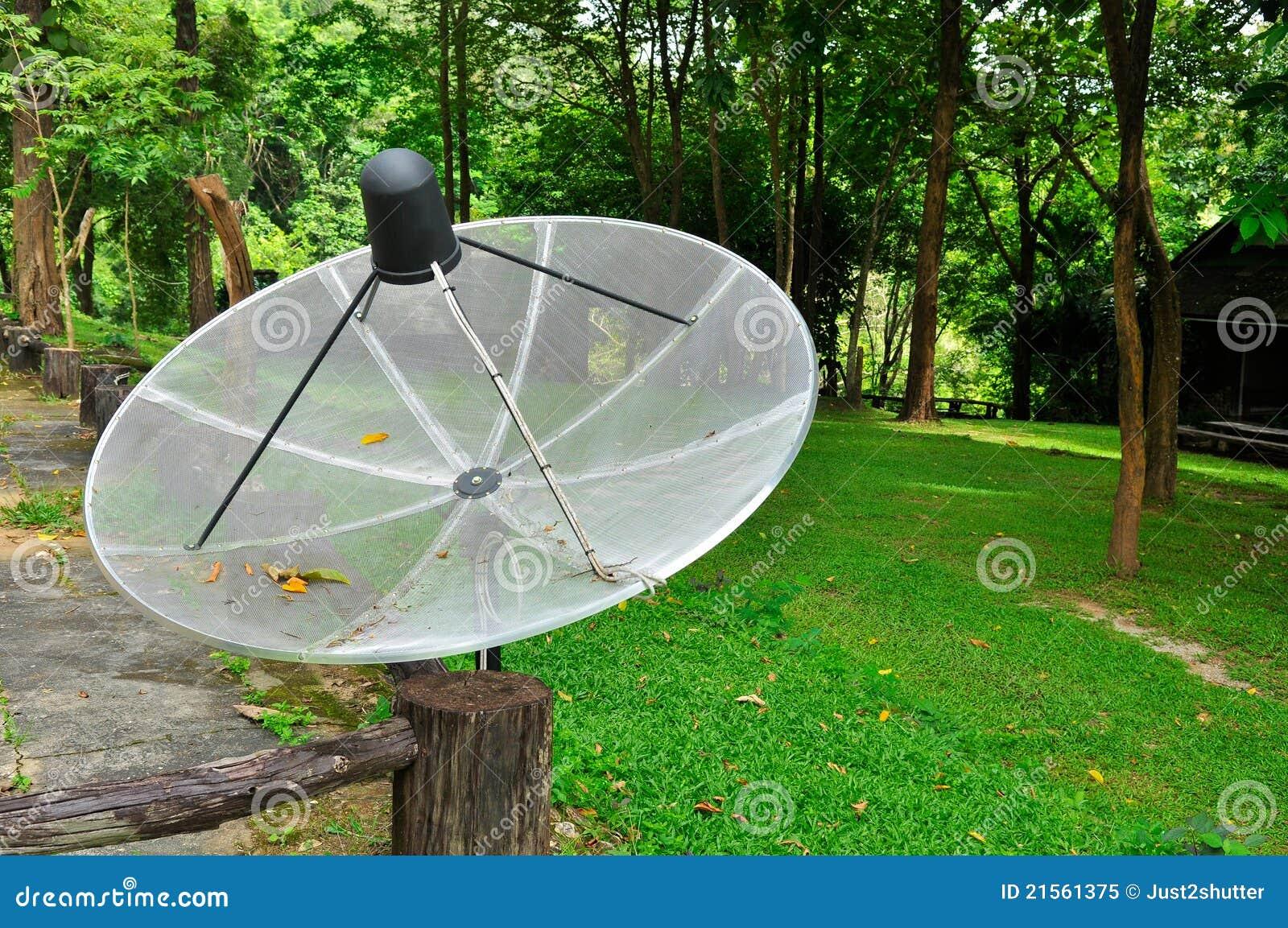 Antenne parabolique dans le jardin