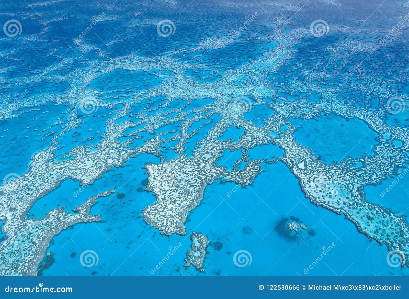 Antenne van Hardy Coral Reef bij de Pinkstereneilanden dat binnen wordt geschoten