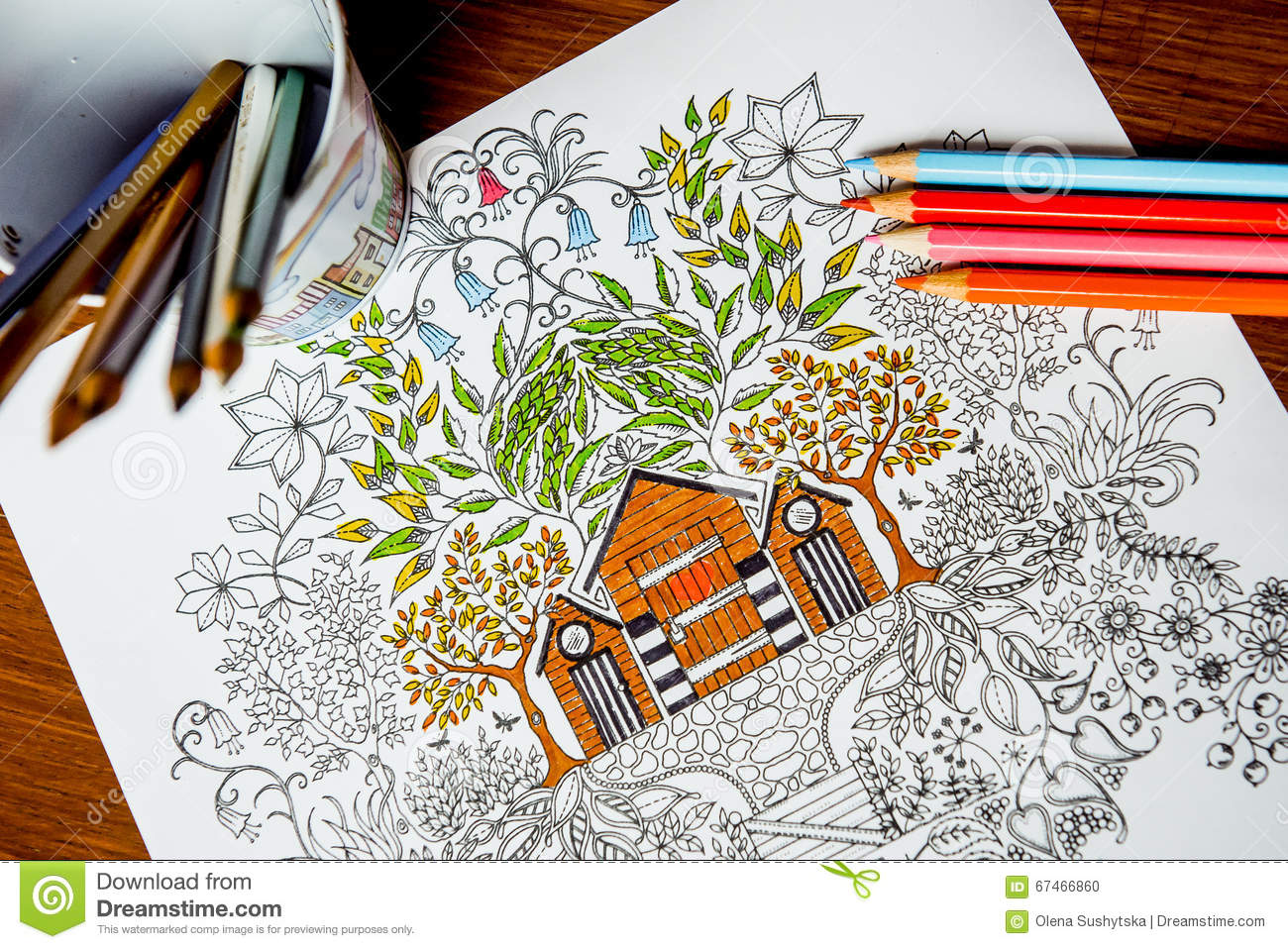 Anti-stress Coloring Book In The Drawing Process Stock Illustration ...