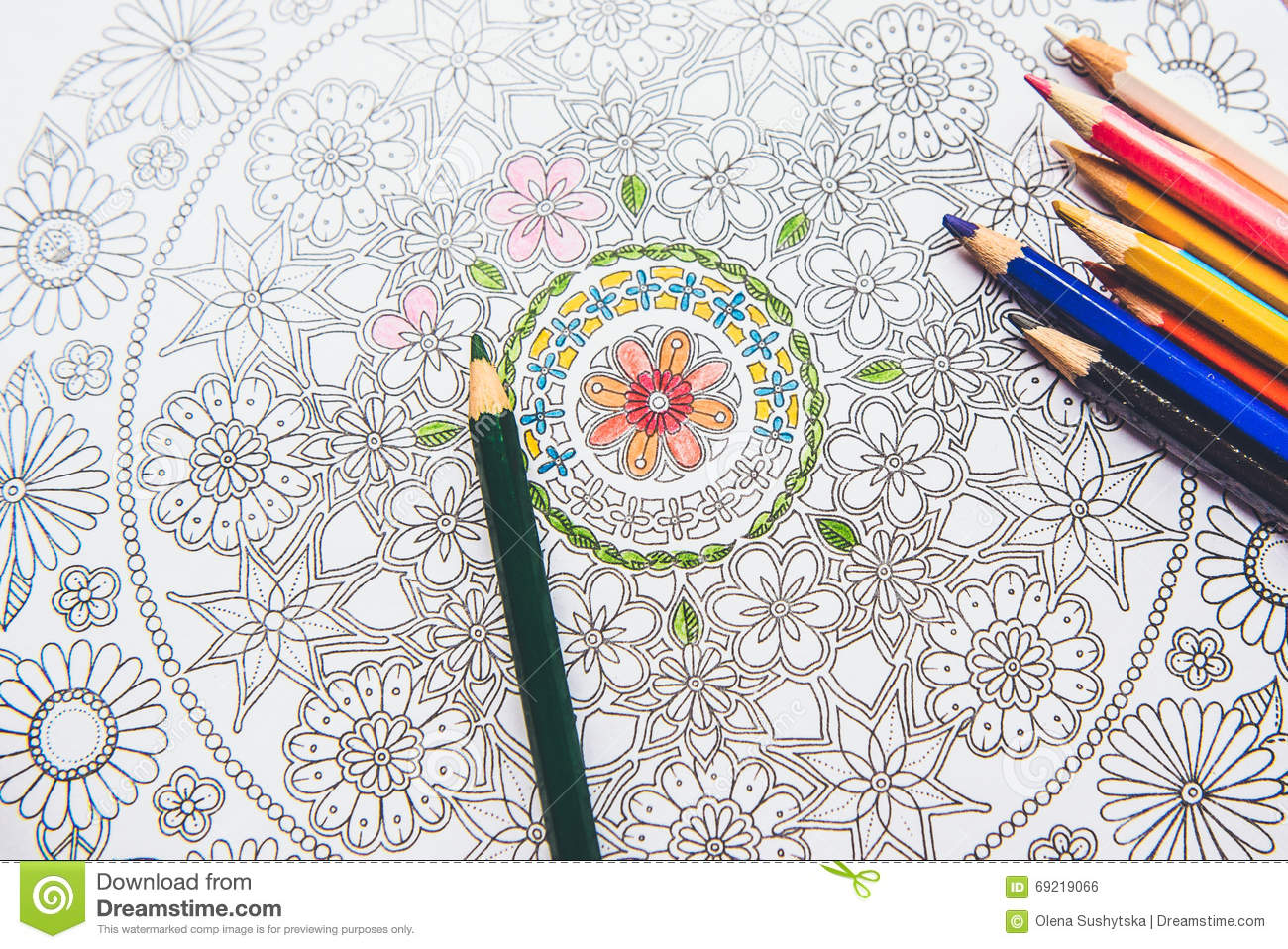 The stress coloring book - Anti Stress Coloring Book In The Drawing Process