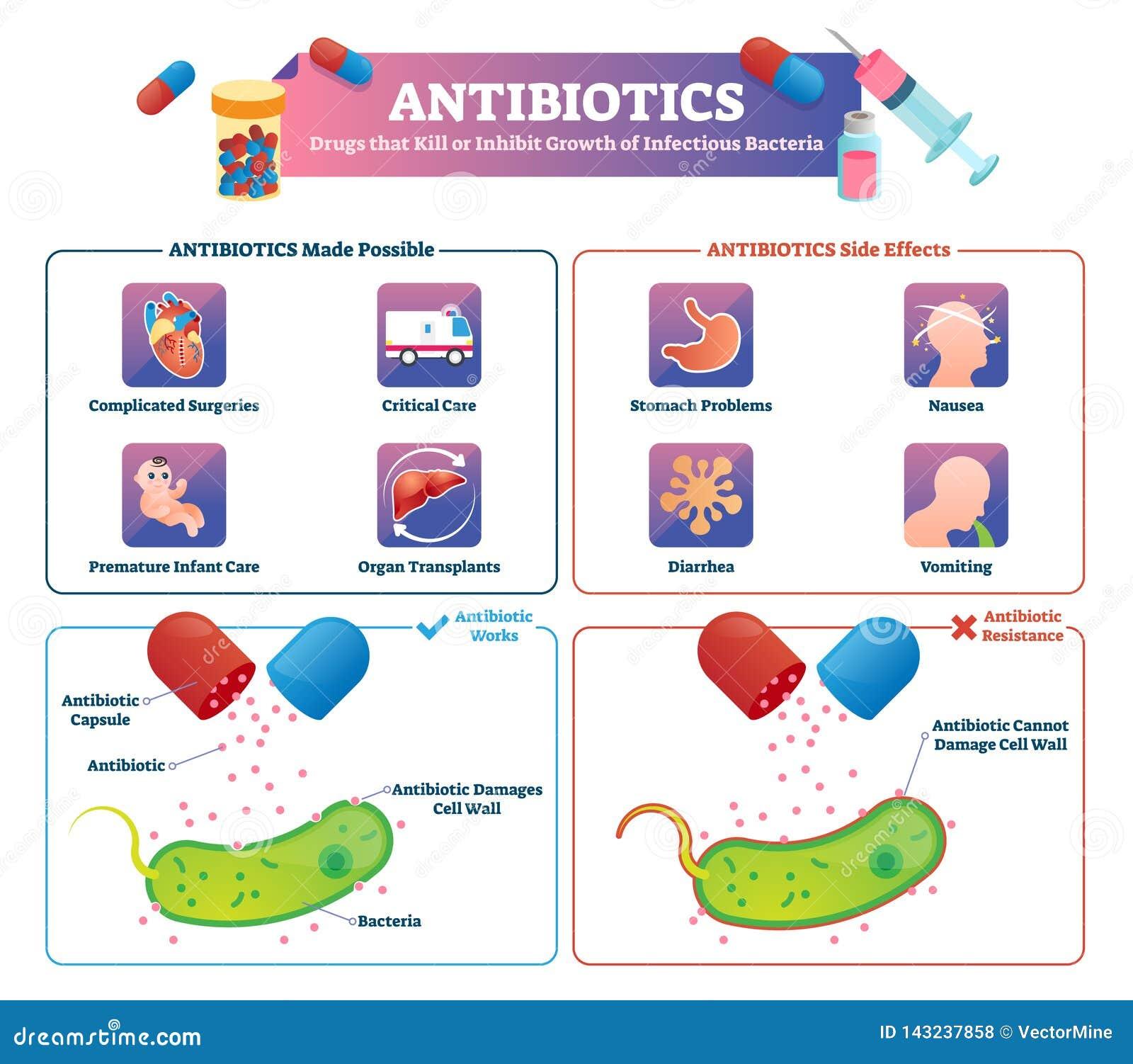 Antibiotics vector illustration. Labeled health medication treatment scheme