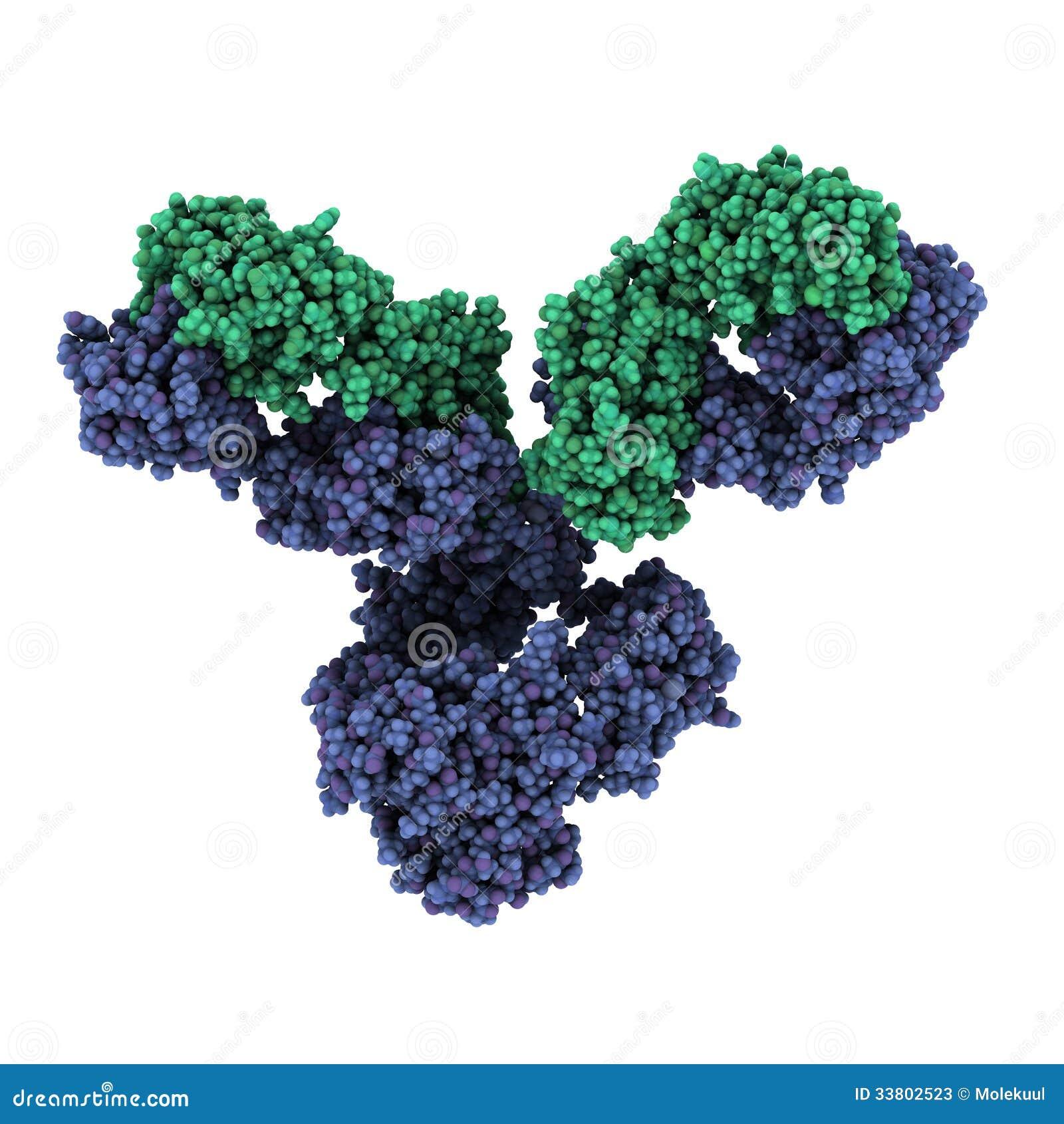La depuración del organismo de los parásitos semenova