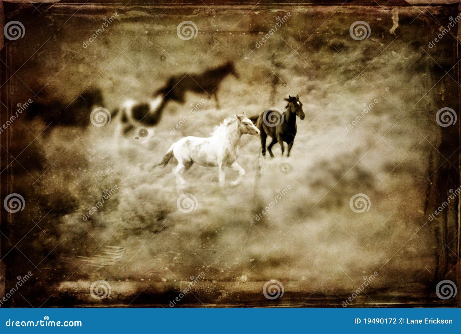 Antiek Westelijk Paard