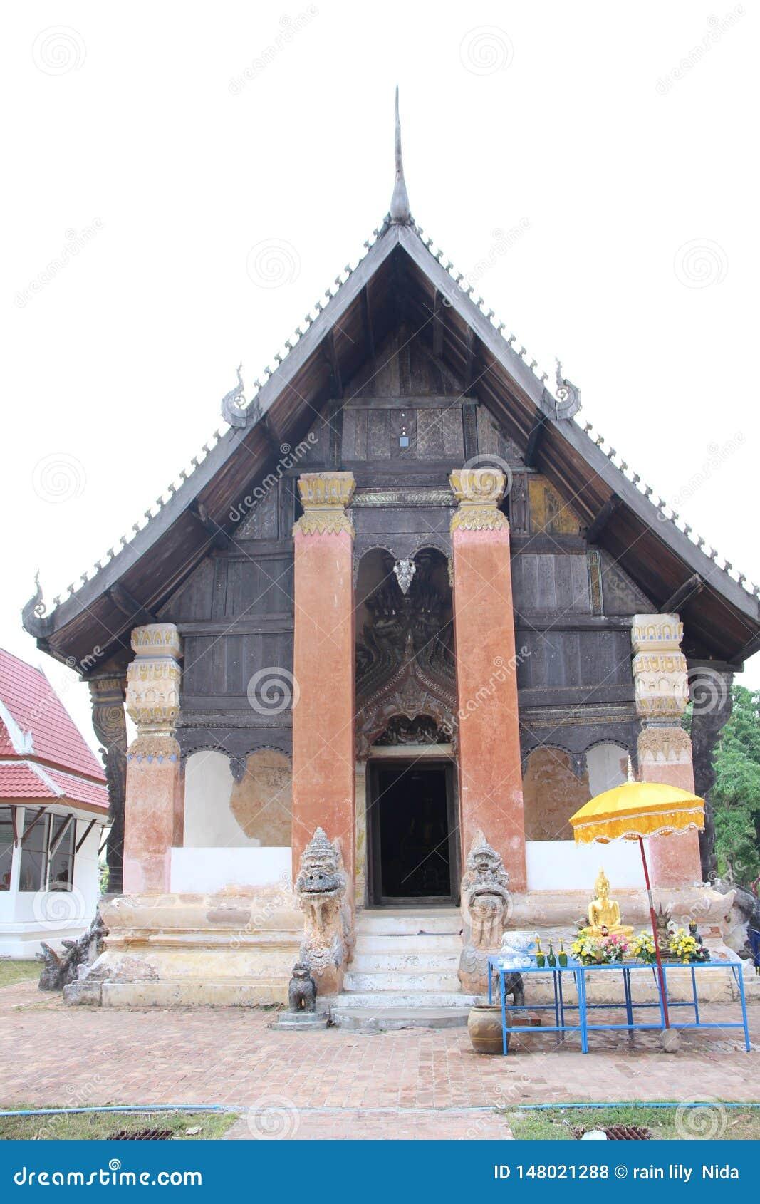 Antieke houten oude bos honderden jaar
