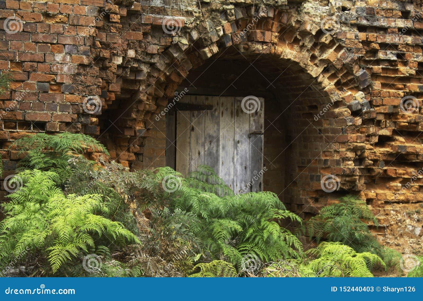 Antike Ziegelsteine zeichnen die Wände eines Ziegelofens auf Maria Island, Tasmanien
