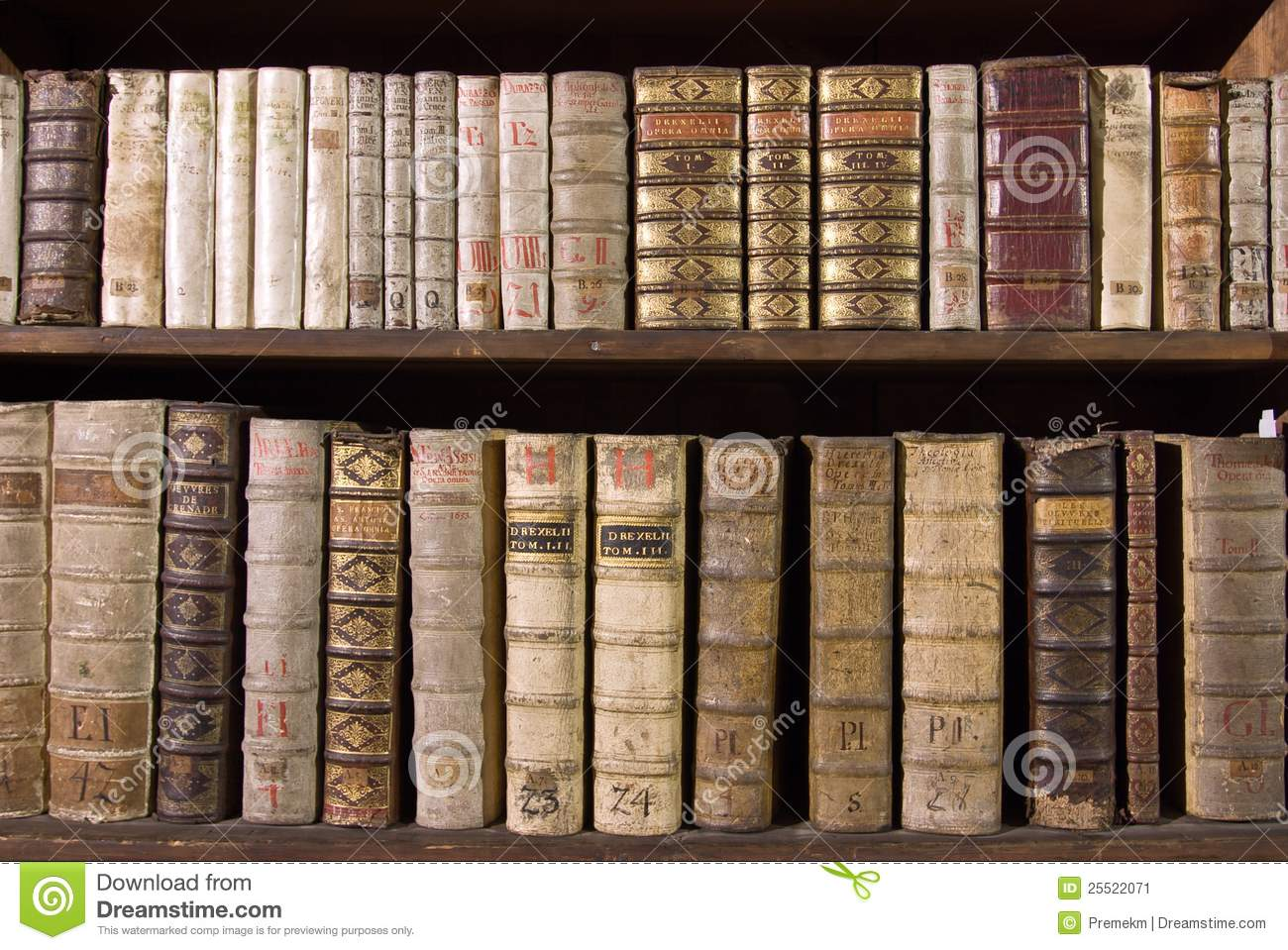 Antique Books On Bookshelf Download Preview