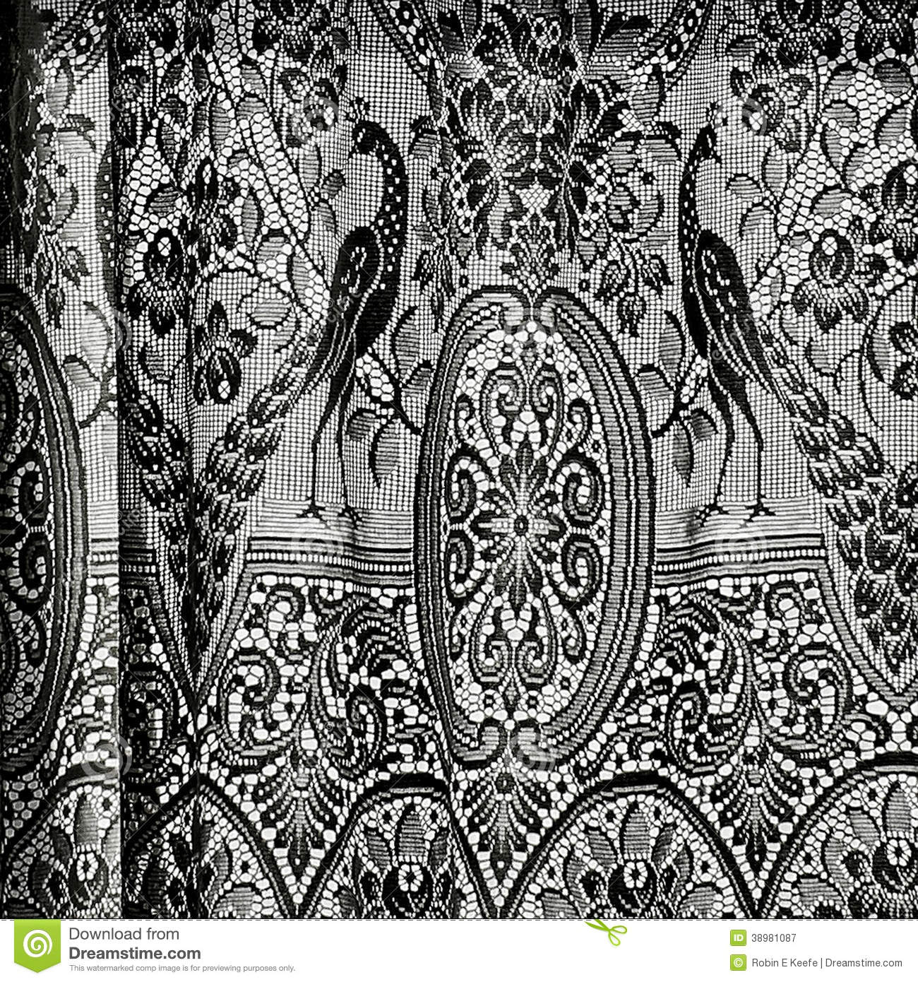 Peacock Photography Black And White Antique curtains in black and