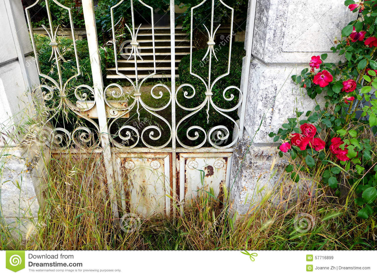 Antique French Garden Gate With Red Roses Stock Photo