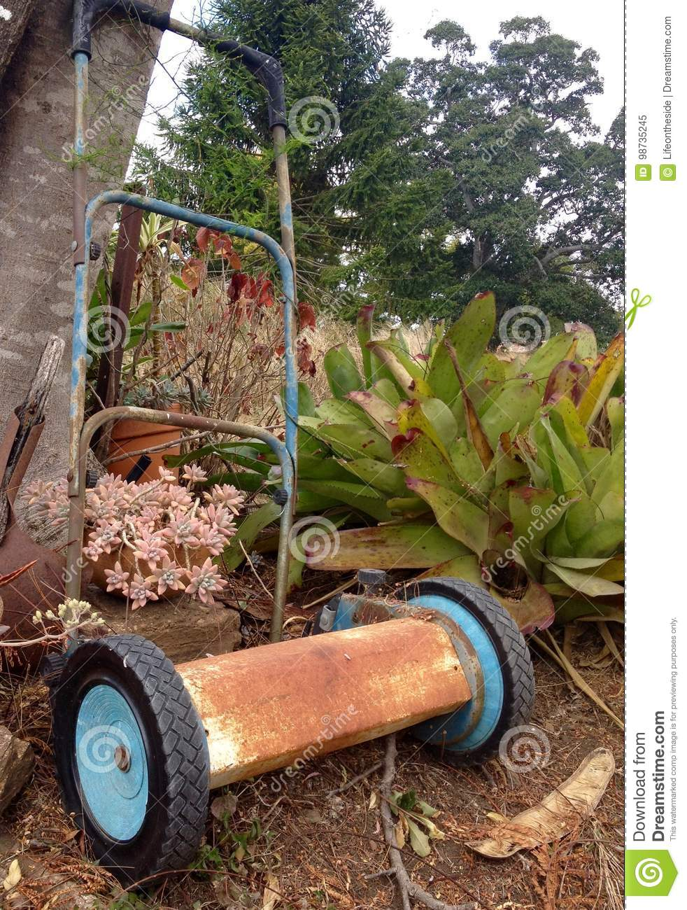 Antique Vintage Garden Landscaping Tools Now Ornament Stock Image ...