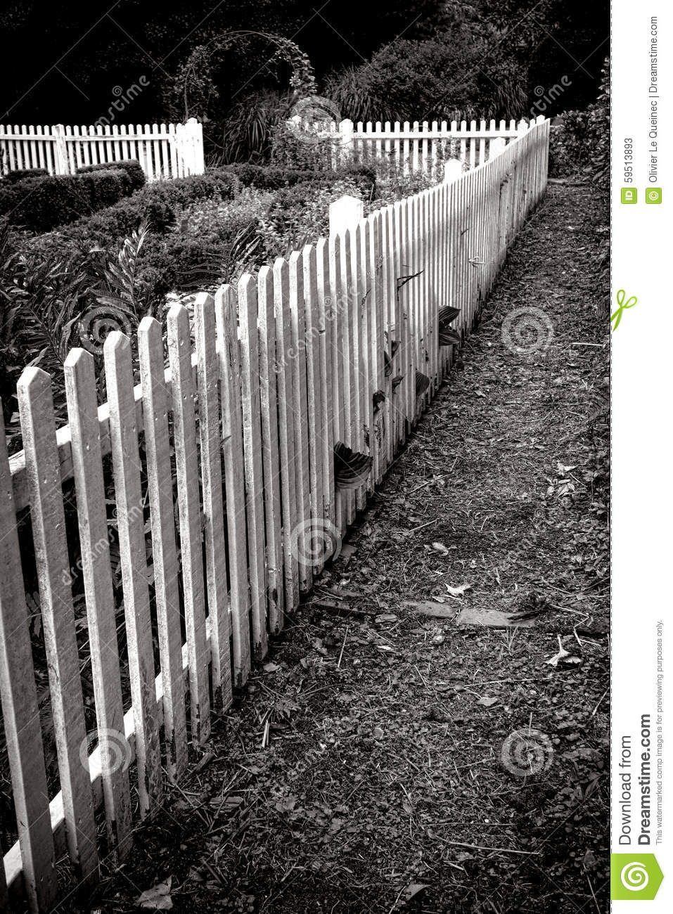 Antique wood white picket fence and old garden stock image