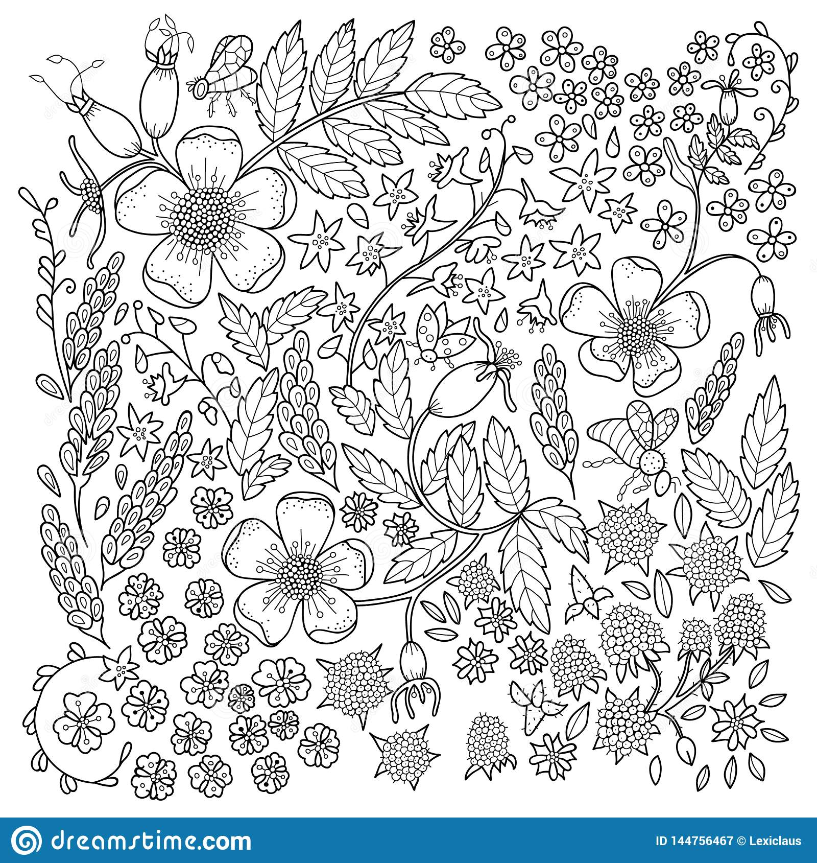 - Antistress Coloring Page For Adults Stock Vector - Illustration Of