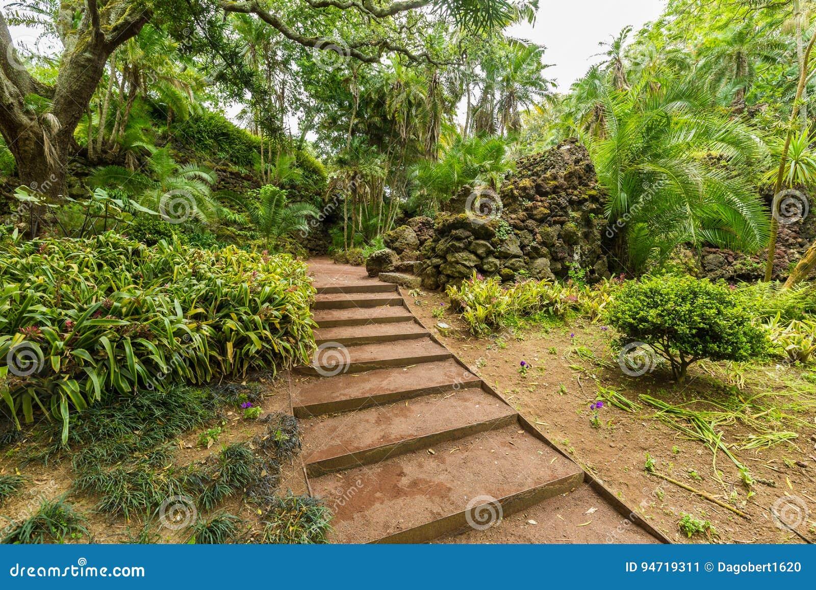 Antonio Borges Botanical Garden dans Ponta Delgada