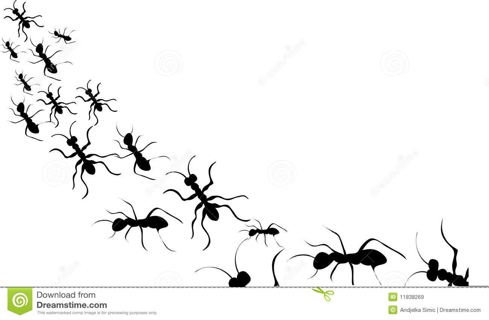 Ants Black Silhouette ...