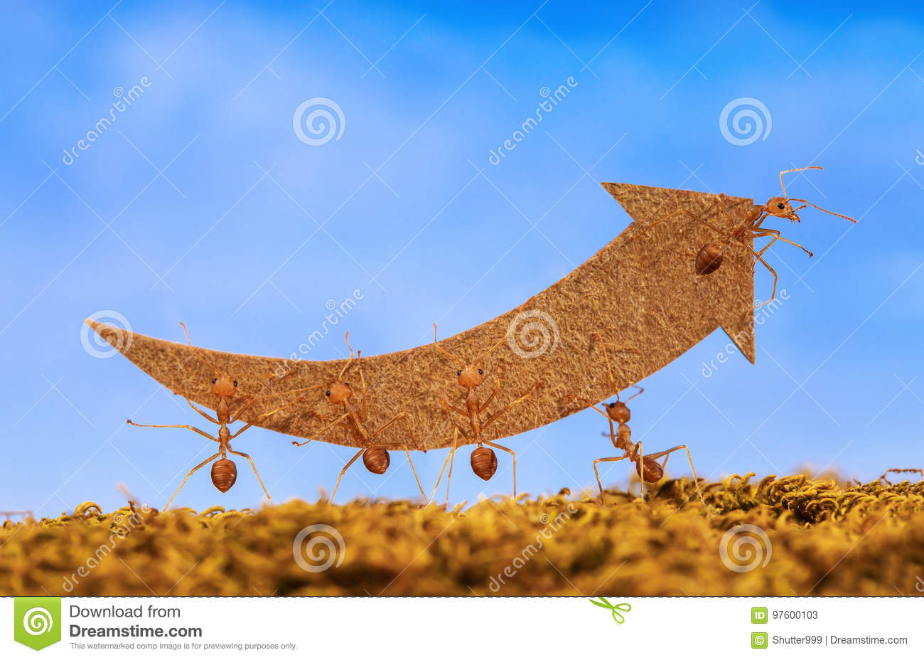 Ants carry rising arrow for business graph