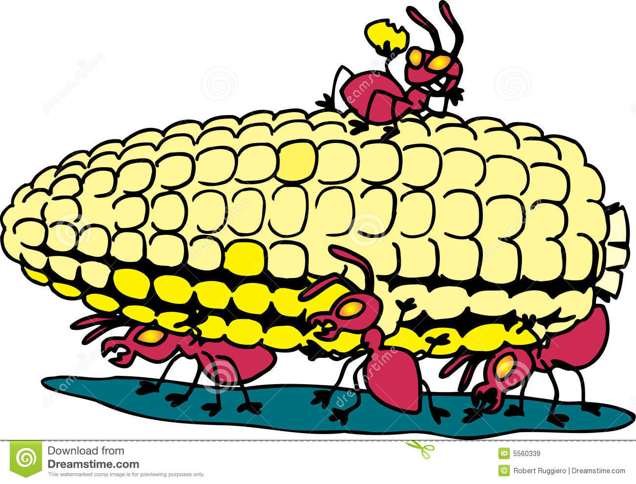 Ants Eating Corn Royalty Free Stock Images - Image: 5560339