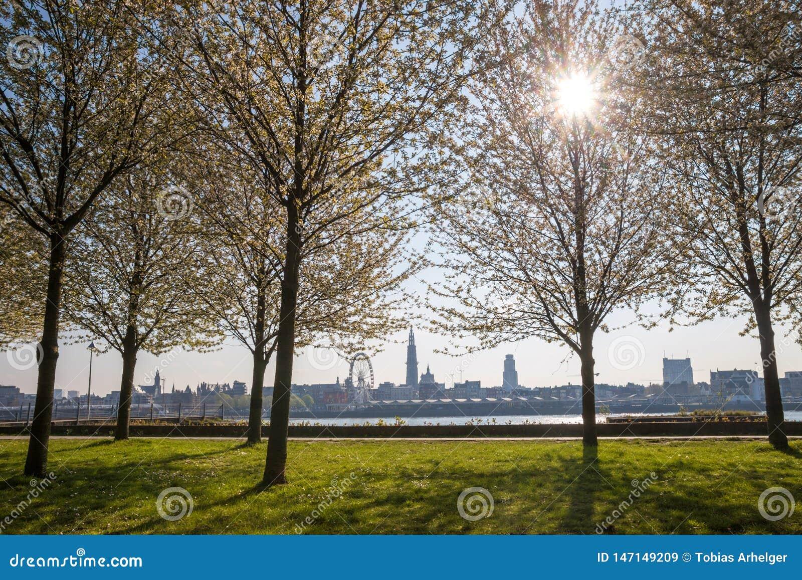 Antwerpen Belgium pogodny pejza? miejski