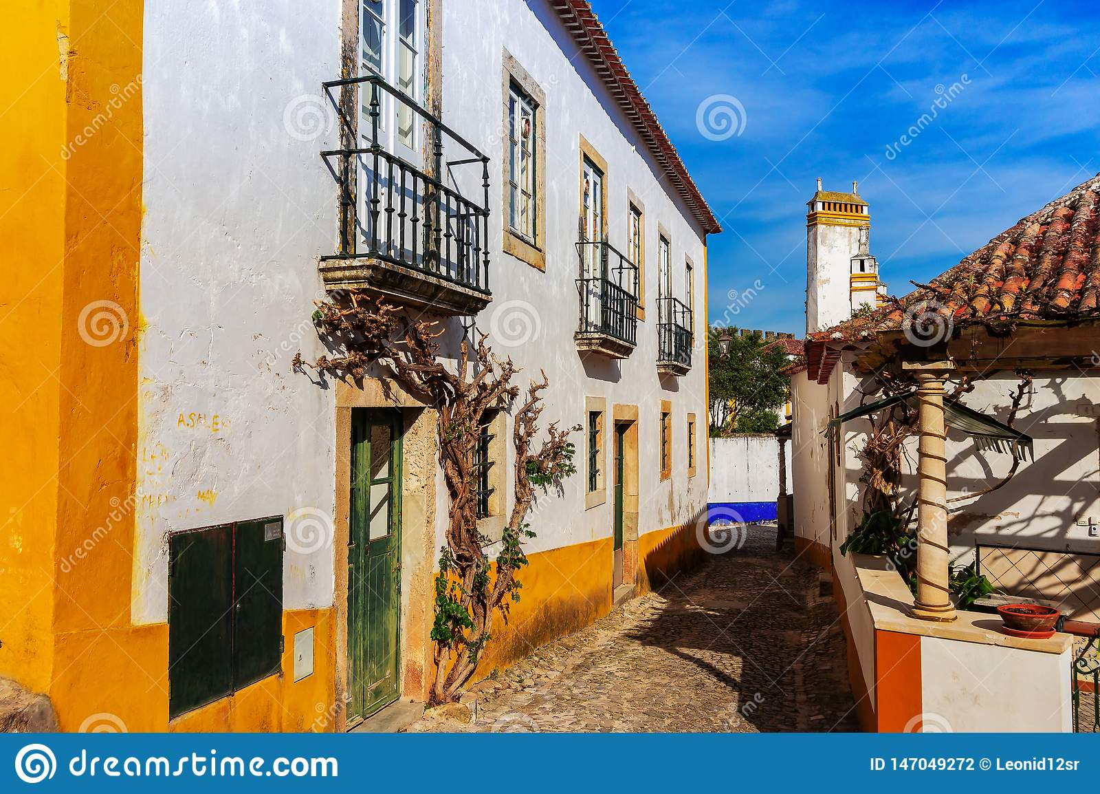 Antyczni domy Portugalska wioska Obidos i ulicy