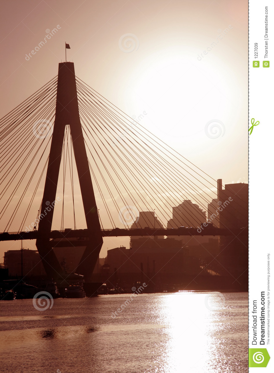 Anzac Bridge In Evening Light