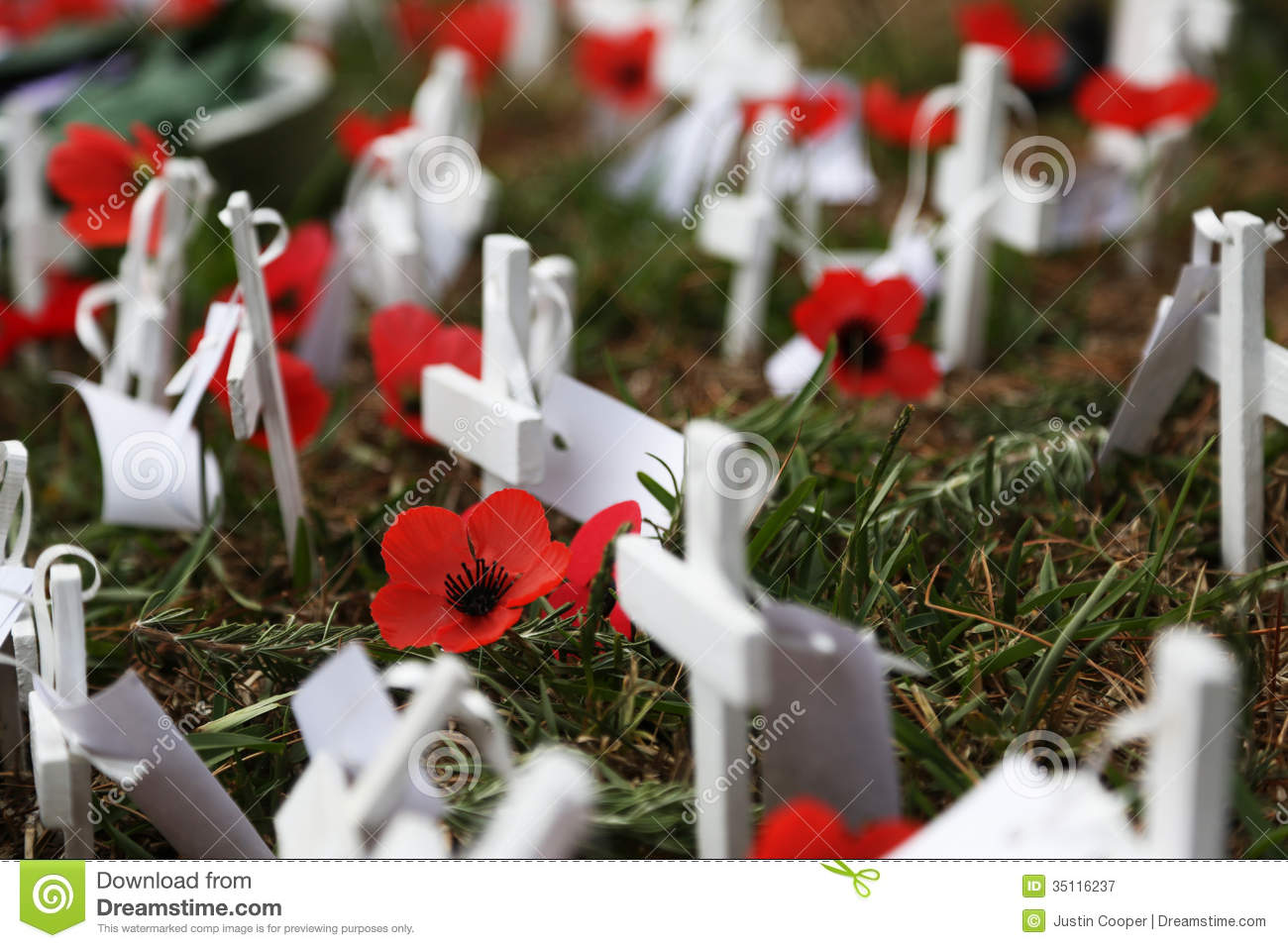 Anzac Day Poppies Royalty Free Stock Photography Image