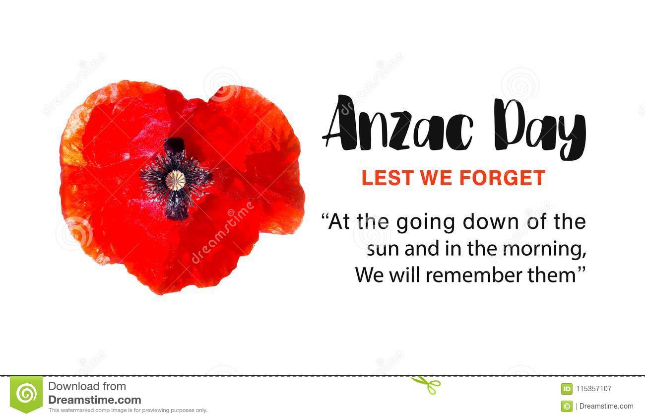 Anzac Day Vector Poster Lest We Forget Stock Vector Illustration