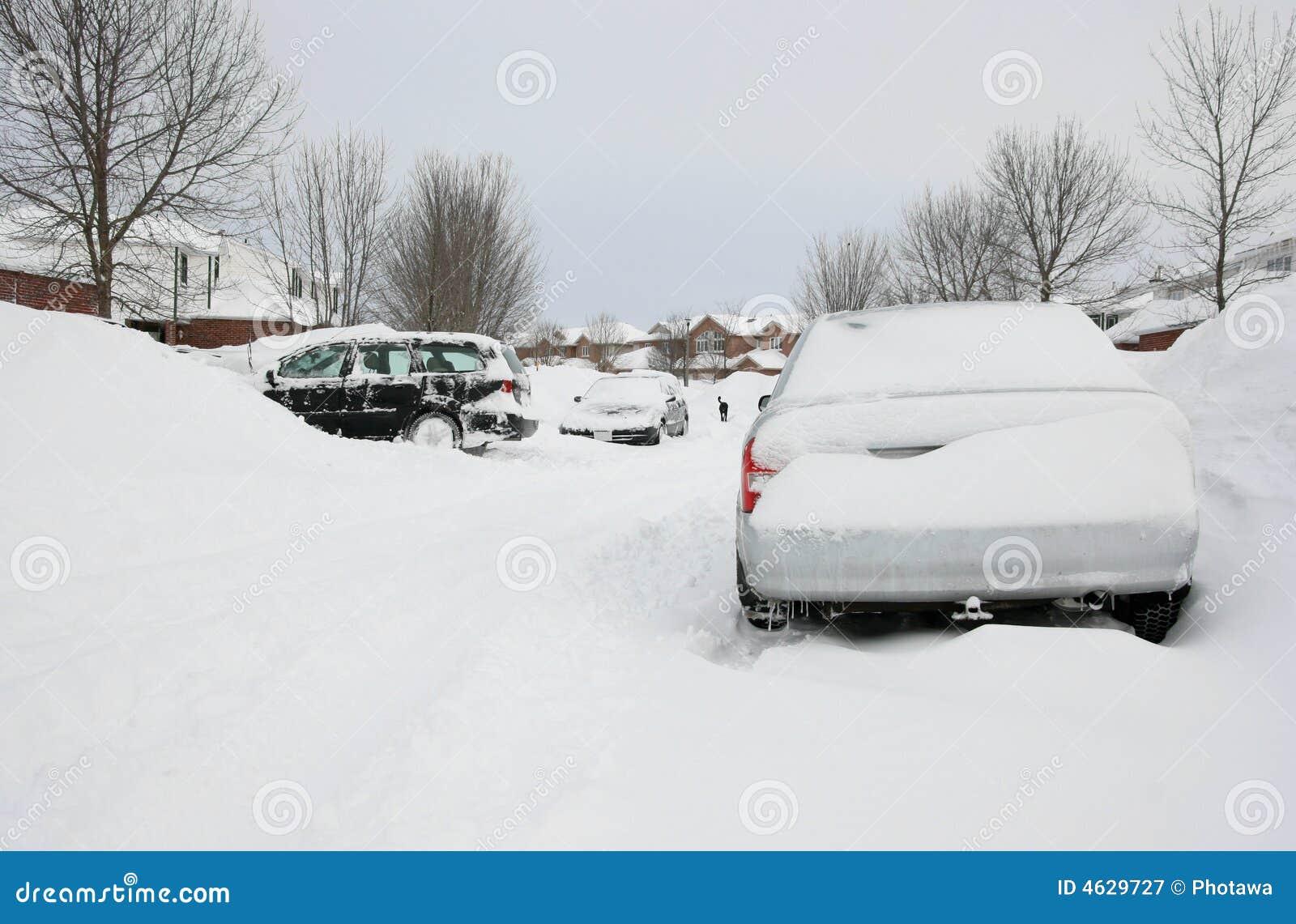 Após a tempestade do inverno