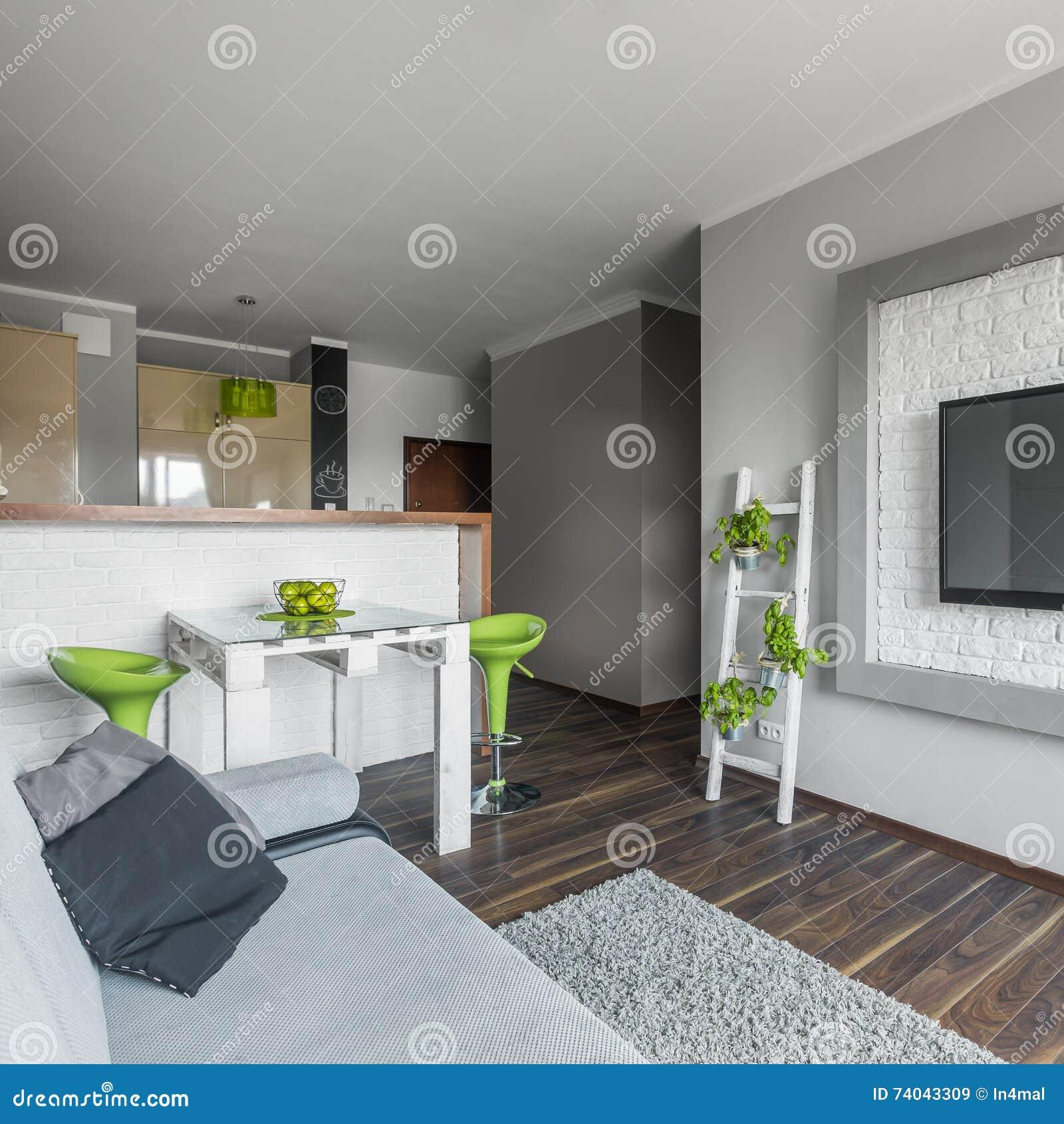 Apartamento Pequeno: Apartamento Moderno Pequeño Pero Funcional Foto De Archivo