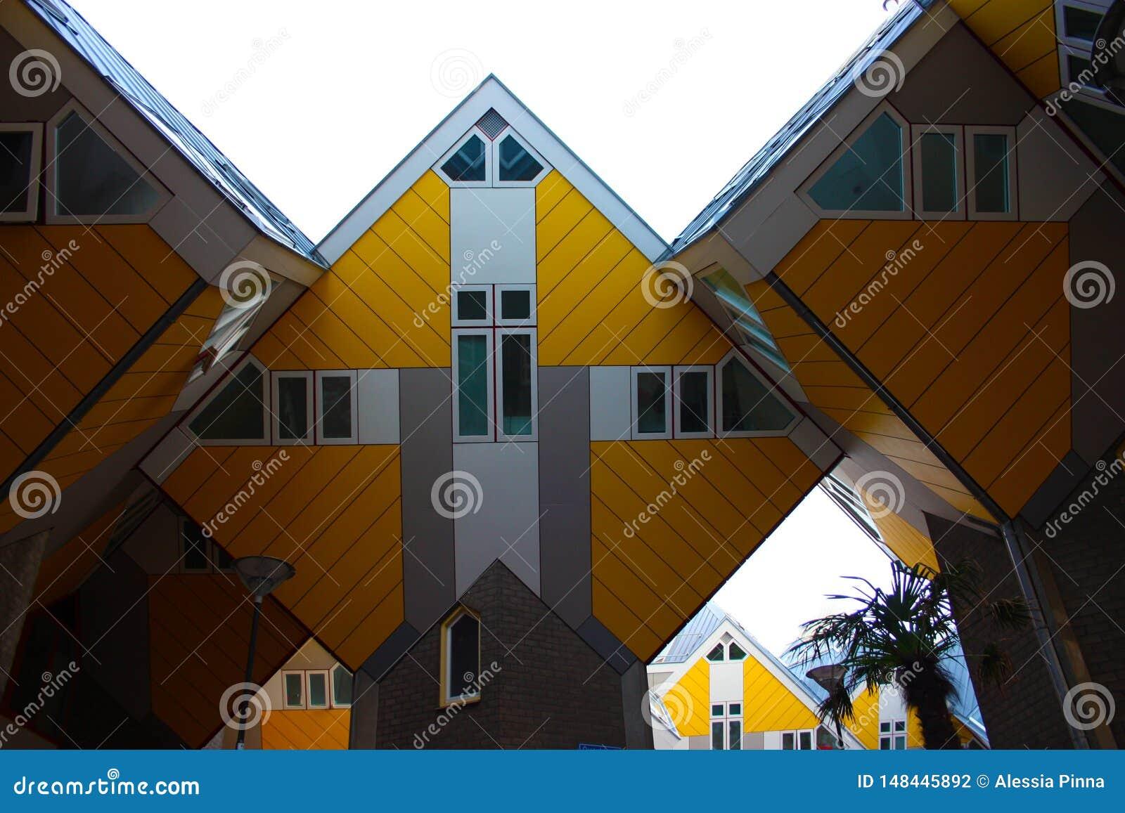 Apartamentos e escrit?rios dentro das casas c?bicas de Rotterdam, cidade metropolitana