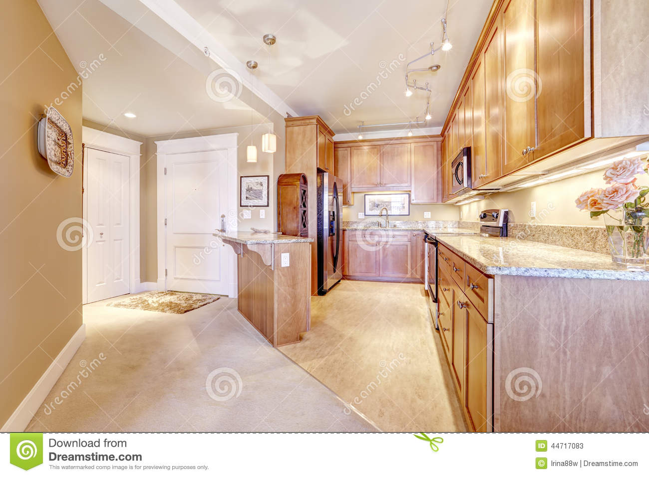 apartment interior. kitchen room with entrance hallway stock photo