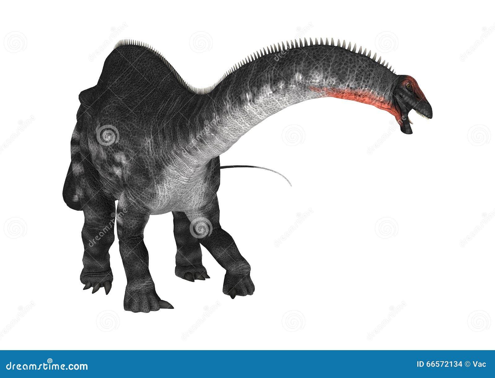 Apatosaurus do dinossauro no branco