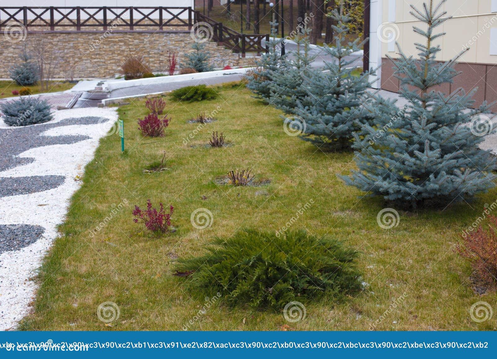 Apelação bonita do freio de uma casa clássica do feriado em Sibéria com ajardinar bonito do jardim da frente Imagem de ajardinar