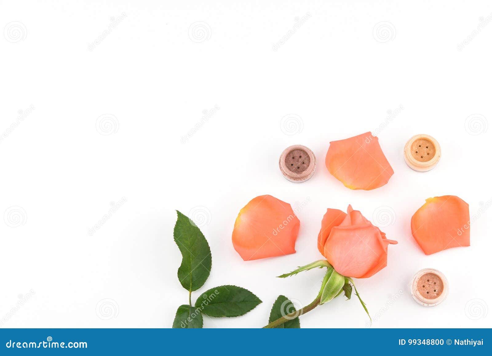 Apelsinros- och ögonskugga med kopieringsutrymme