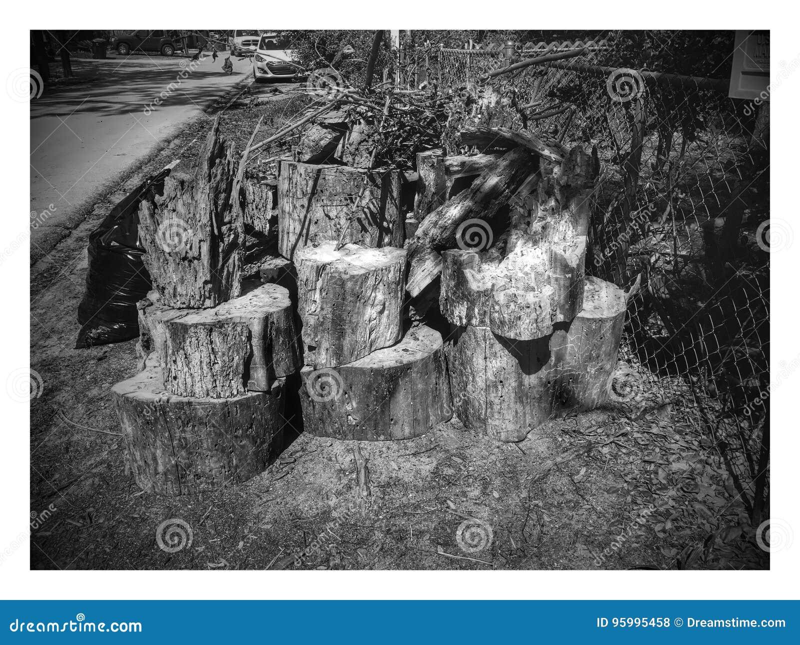 Apenas de madera