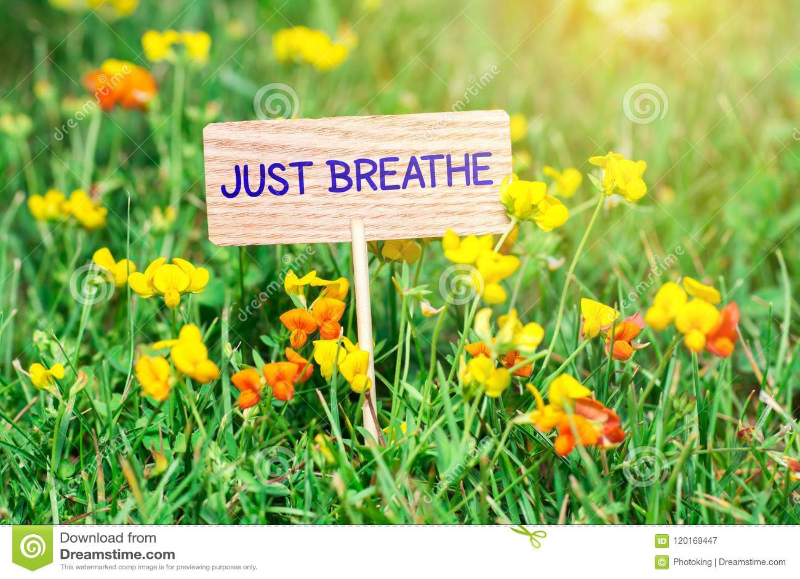 Apenas respire el letrero