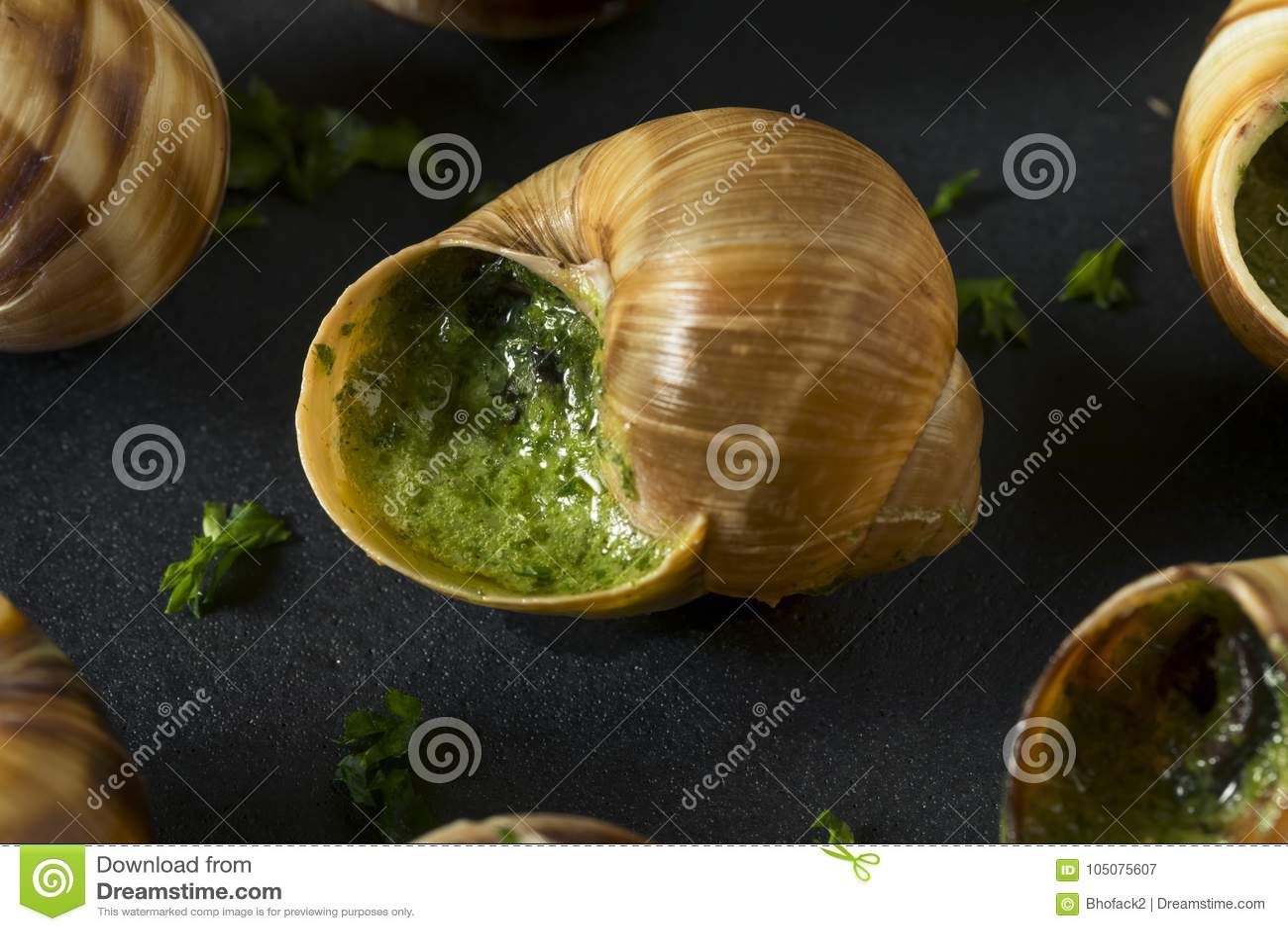 Aperitivo quente francês extravagante do escargot