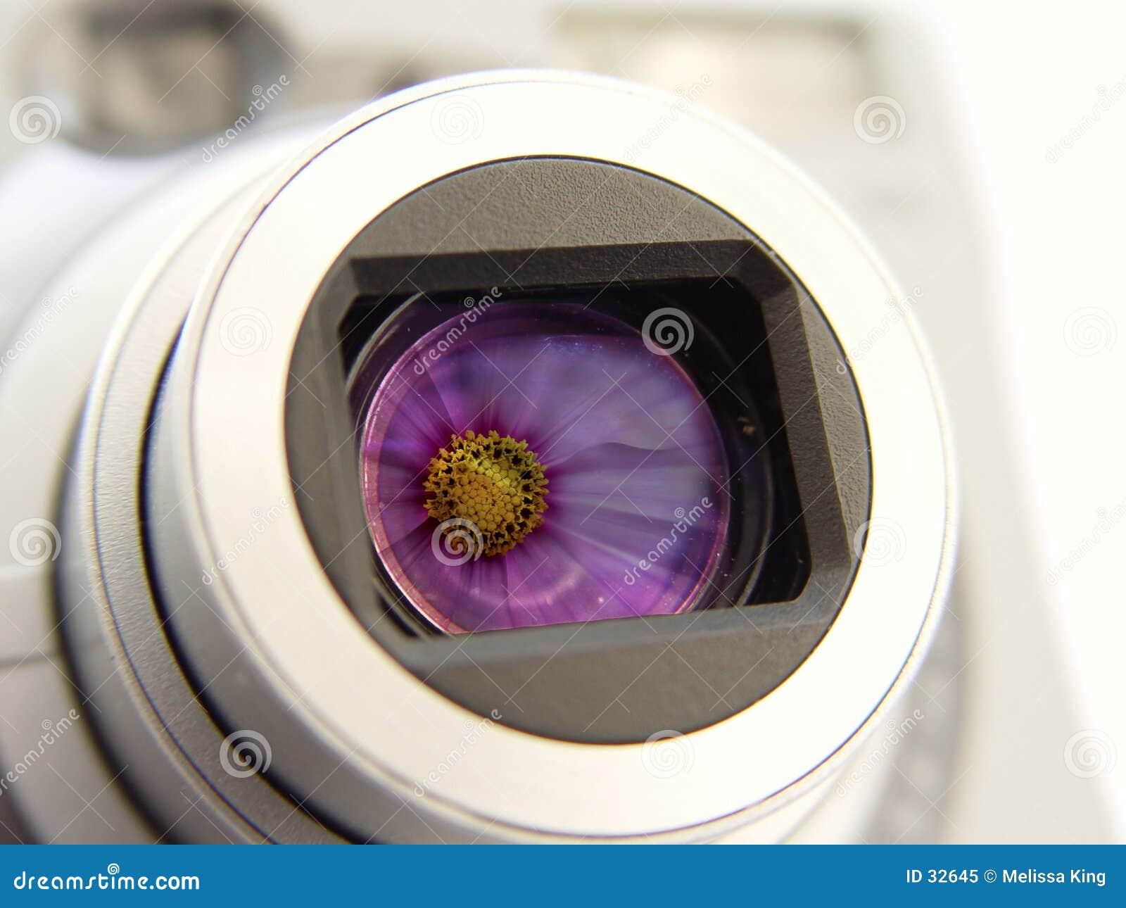 Appareil-photo avec la réflexion de fleurs