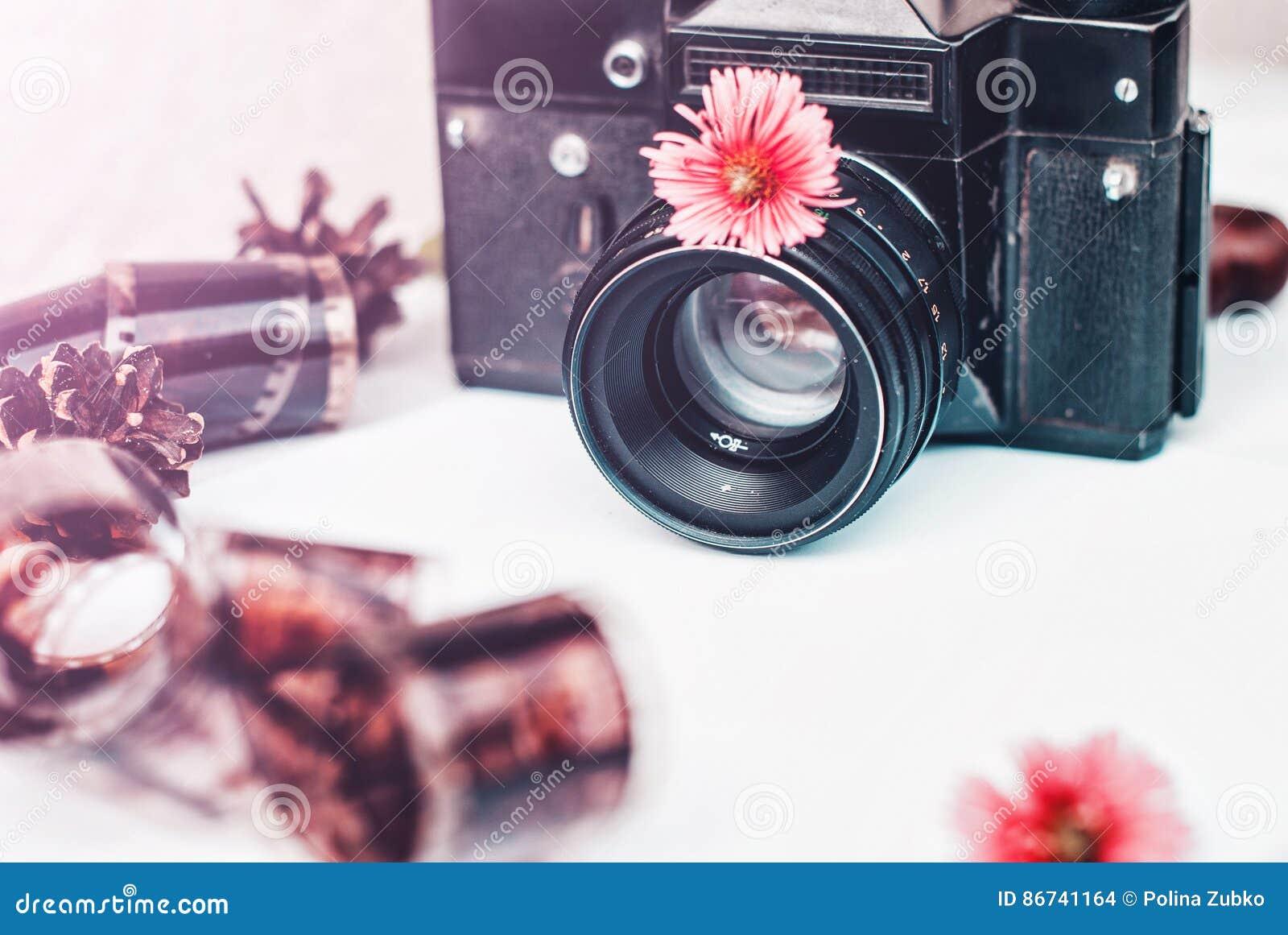 appareil-photo de film de vintage, fleurs roses et film sur le