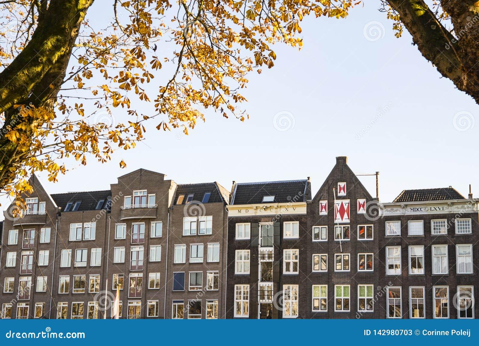 Appartements de brun de rangée dans la rue Kuipershaven, dans Dordrecht, les Pays-Bas