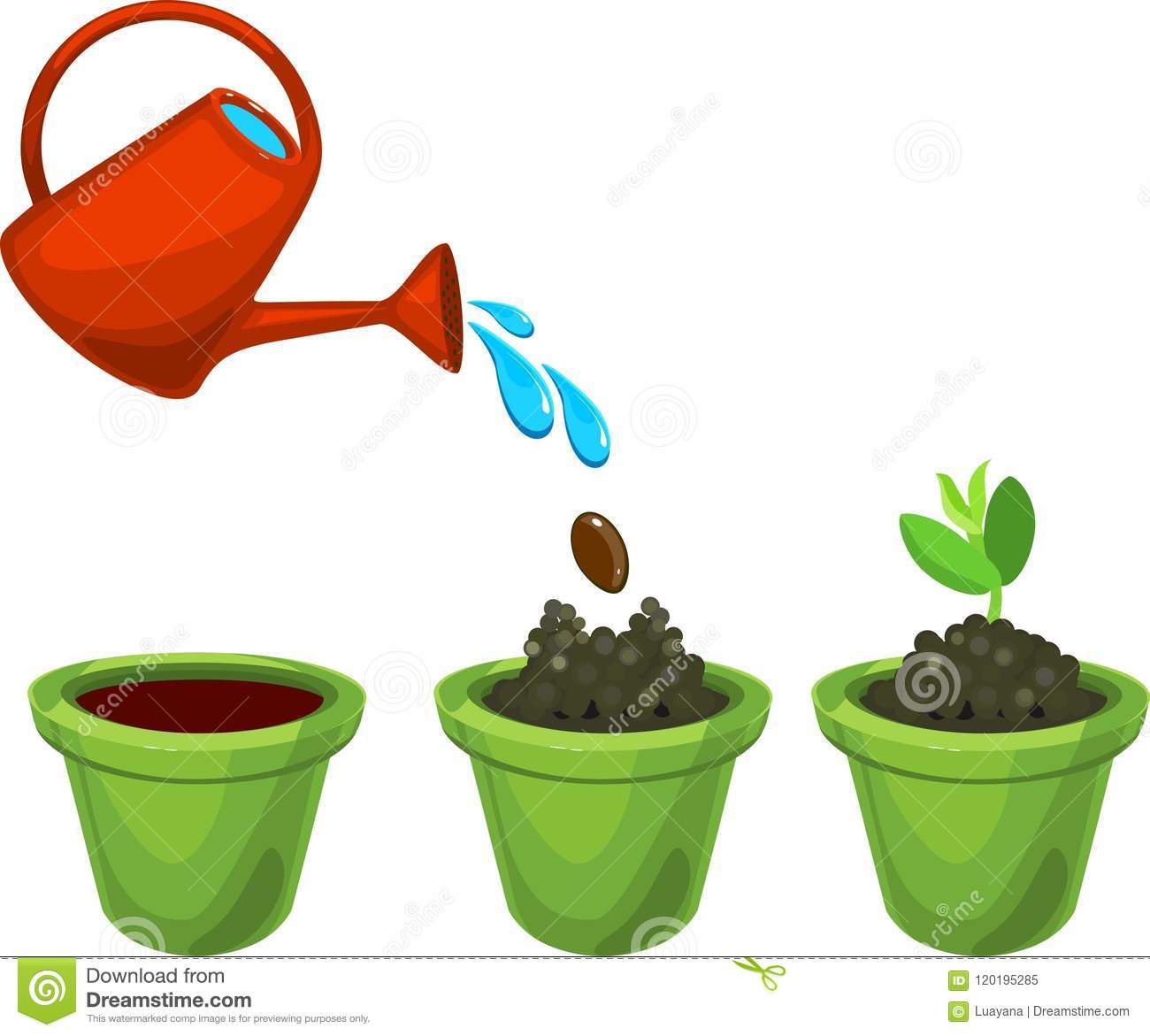 Image result for watering the seed