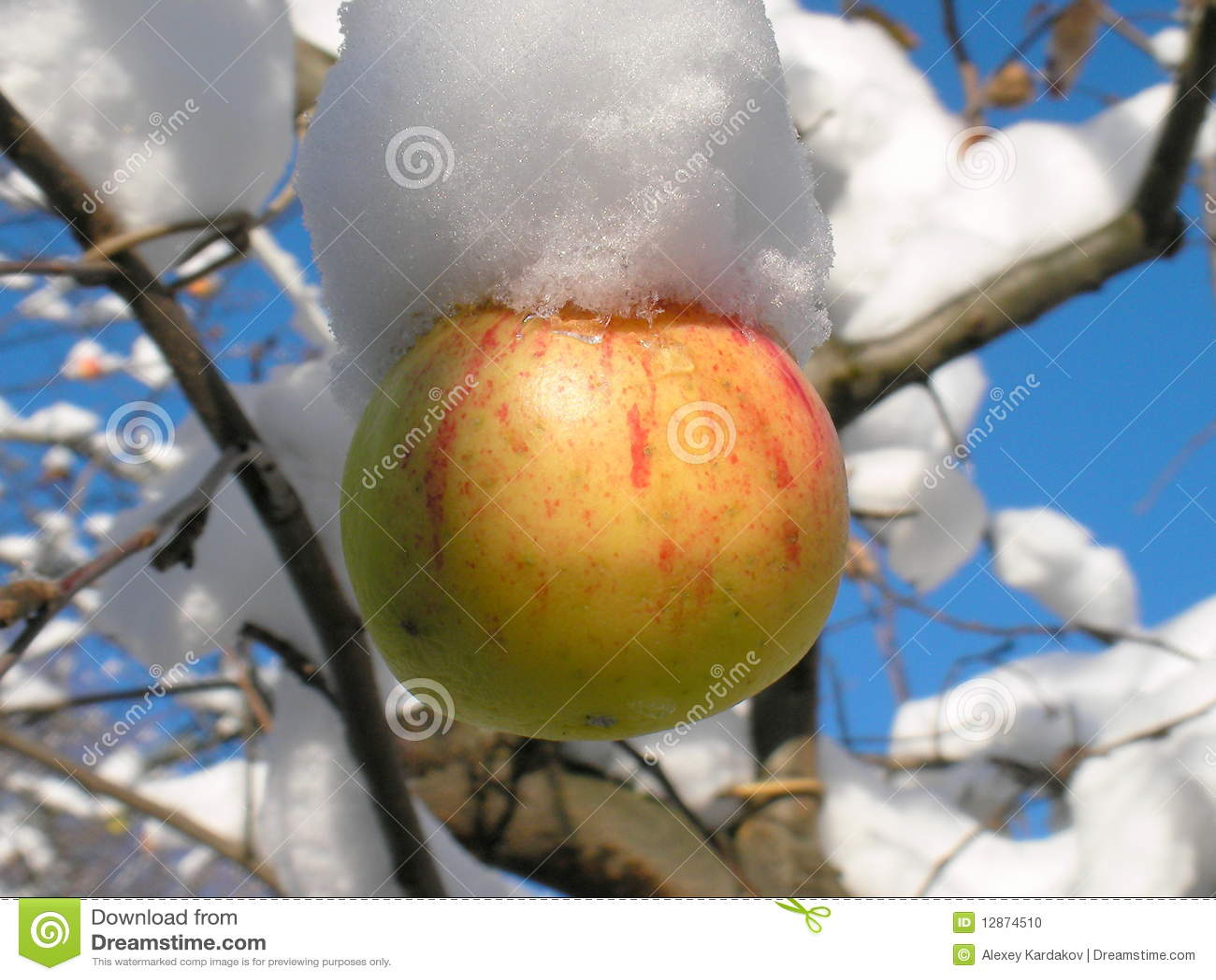Appel en sneeuw